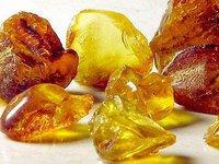 Два участка для добычи янтаря на Ровенщине продали через онлайн-аукцион за более 100 млн грн