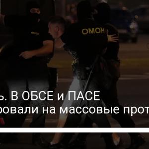 Беларусь. В ОБСЕ и ПАСЕ отреагировали на массовые протесты