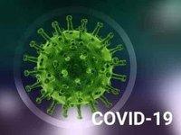 На юге Европы остается высокая смертность от COVID-19