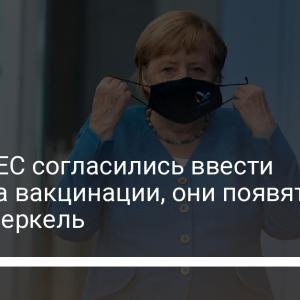 Страны ЕС согласились ввести паспорта вакцинации, они появятся к лету – Меркель