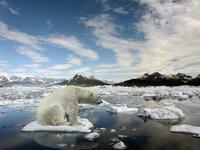 Спецпредставитель президента США по климату призвал энергетические компании развивать новые технологии