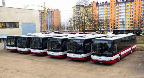 Ивано-Франковск собрался закупить еще одну партию турецких автобусов