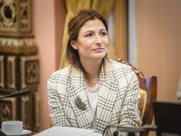Первый замглавы МИД Украины презентовала Крымскую платформу облгосадминистрациям
