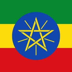 ВВС Эфиопии разбомбили бывшую штаб-квартиру северного командования армии страны в городе Мекелле, которую использовали мятежники